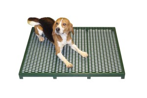 animal floor design comfort RACS