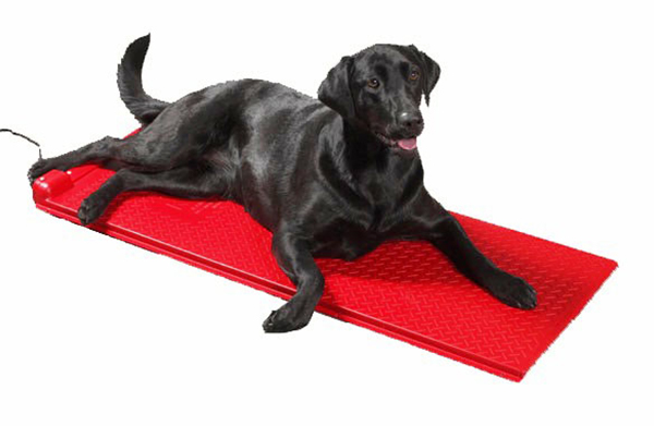 Poly Pet Heat Mats