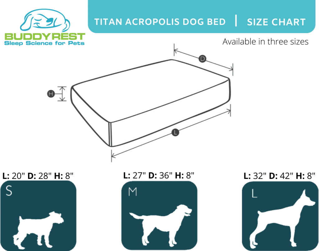 large dog bed size chart